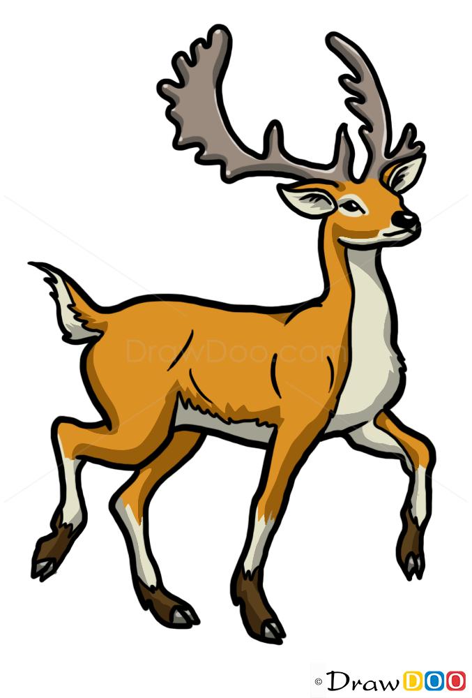 How To Draw Deer Wild Animals
