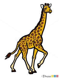 How to draw giraffe wild animals for Giraffe draw something